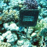 Diese Schilder findet man oft im Giftun Nationalpark, Mai 2004