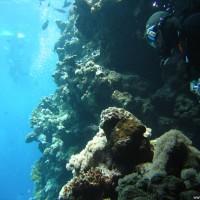 Joe kommt aus der Unterwasserhöhle, Mai 2007