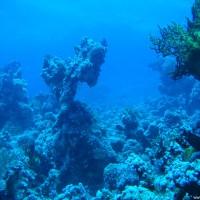 Blick über das Riff, Mai 2007