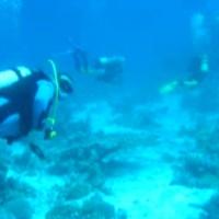 Unterwasserspaziergang, Mai 2004