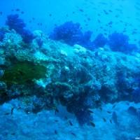 Ein Mast unten über dem Meeresboden, September 2006