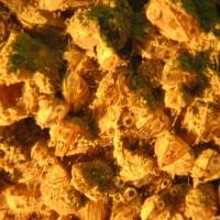 Die Muscheln aus der Nähe, Juli 2005