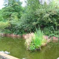 Teichanlage, Oktober 2005