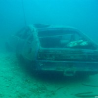 Das blaue Auto, Mai 2005