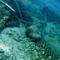 Reste der Stahlmatten, Mai 2005