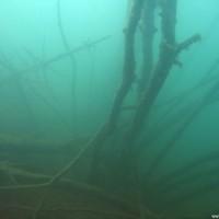 Die Unterwasserlandschaft direkt rechts vom Einstieg, März 2006
