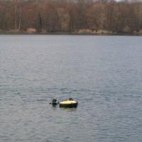 Zwei Taucher an der Boje, März 2006