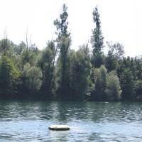 Blick über den See, Juli 2005
