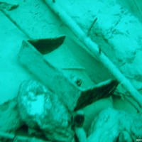 Munitionskiste, Februar 2008