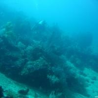 Blick über das Riff, September 2007