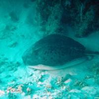 malediven2002_060