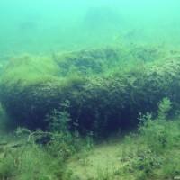 Was da alles so an Müll im See liegt, Juni 2002