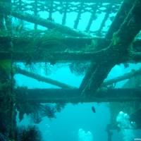 Dry Dock (künstlich versenktes Trockendock), Oktober 2003