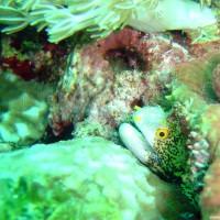 philippinen2003_126