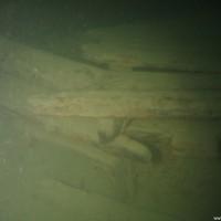 Mehr oder weniger verwittertes Holz, November 2005